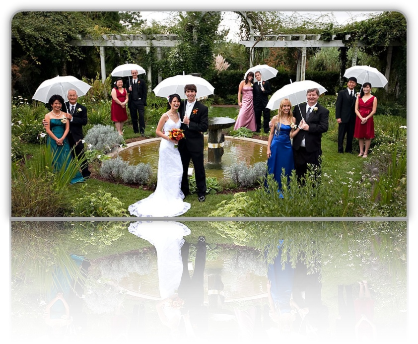 Wedding Umbrella - Weddingstar - Wedding Decorations,Wedding